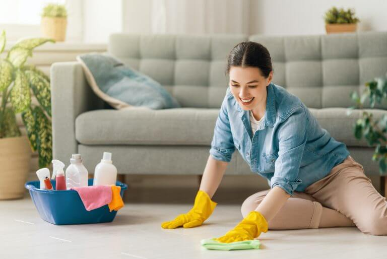 woman doing cleaning the house.